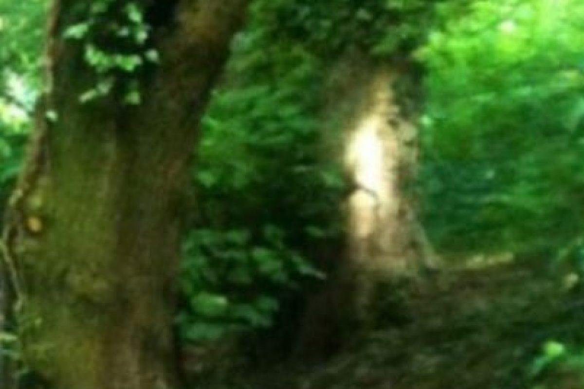 ¿Qué opinan de esta mancha de luz? Foto:Birminghamhistory. Imagen Por: