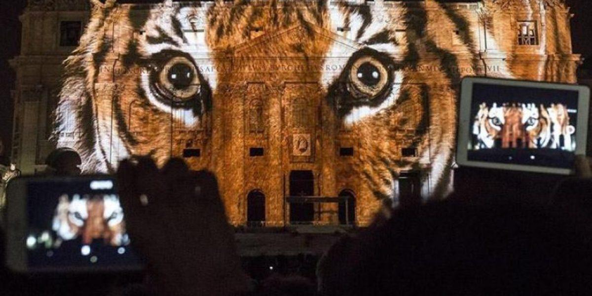 Vaticano se tiñó de luz y color al inicio del Jubileo