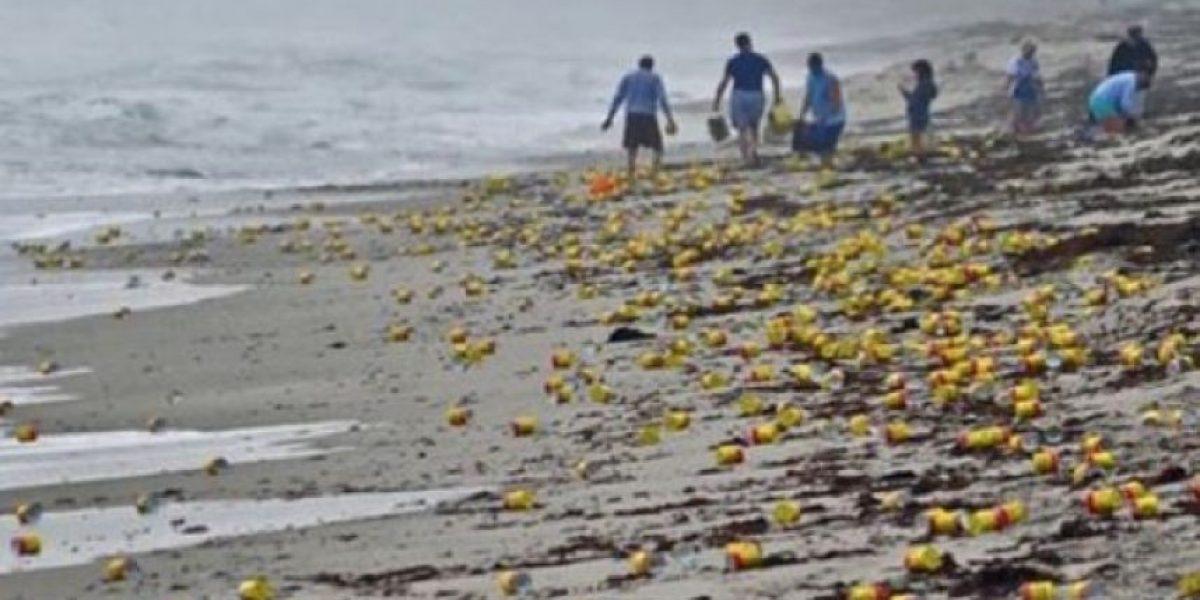 ¡Inédito! Centenares de latas de café aparecen en una playa de Florida