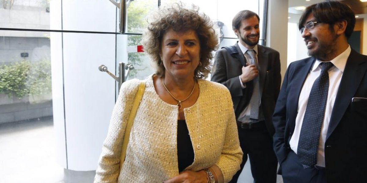 Estos fueron los alegatos de los abogados del ejecutivo y Chile Vamos por gratuidad