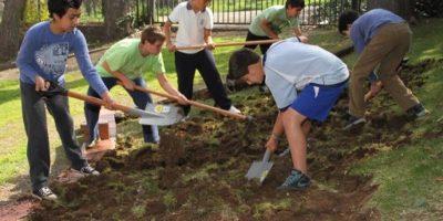 Colegios municipales de Las Condes lograron excelencia en certificación ambiental