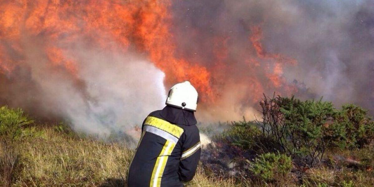 Conaf advierte condiciones favorables para incendios forestales