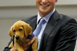 2009- En Reino Unido, durante una visita a una organización que protege a los perros. Foto:Getty Images. Imagen Por: