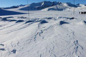 Así se ve en 2015, todo tapado de nieve. Algunas olas destacan sobre la nieve y recuerdan que el refugio está ahí Foto:Jaime Liencura / Publimetro. Imagen Por: