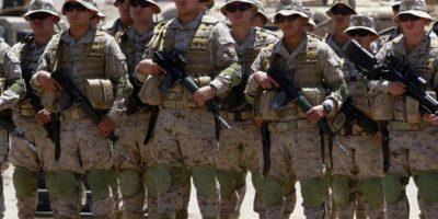 Famae se querella por presencia de cocaína al interior de cargamento militar