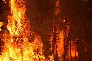 4. Se desconocen las causas del incendio. Foto:Archivo/Getty Images. Imagen Por: