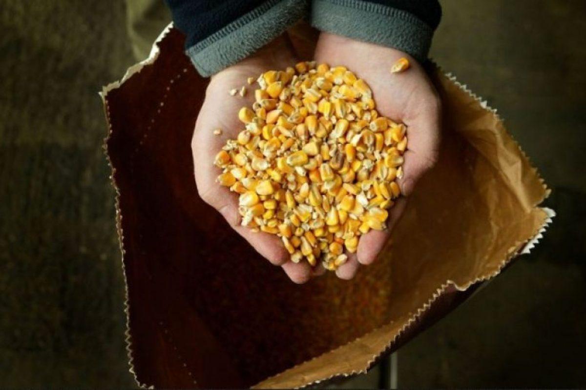 7. Productos modificados genéticamente Foto:Getty Images. Imagen Por: