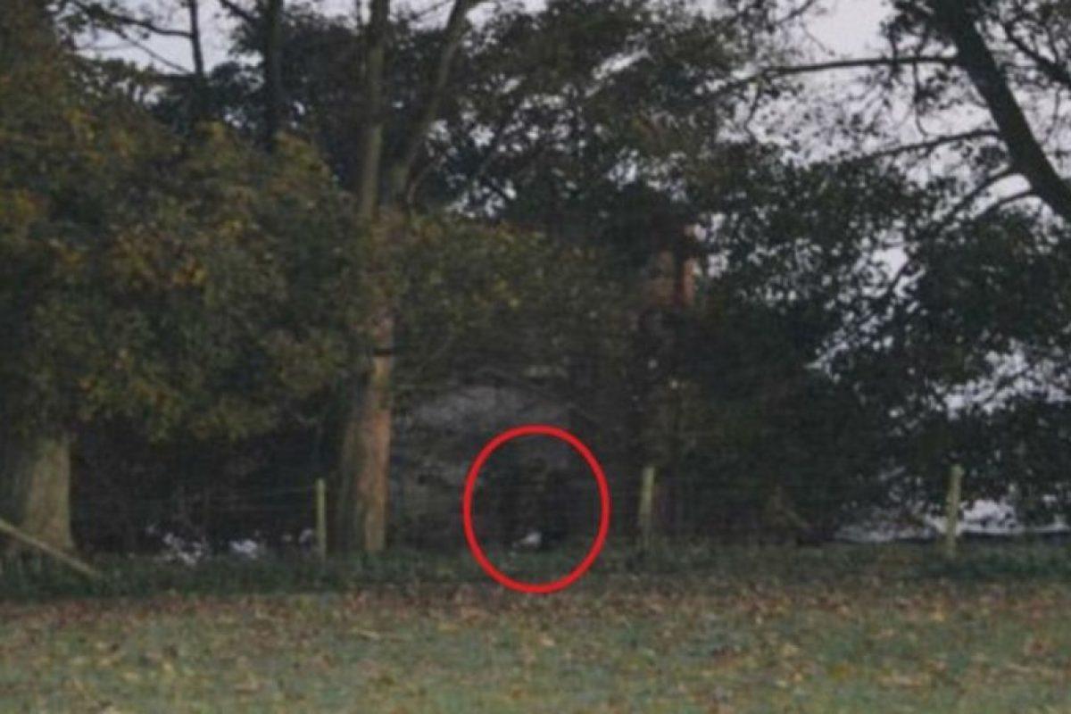5. La imagen fue tomada por el fotógrafo amateur Jamie Brassington en Staffordshire, Reino Unido, quien visitó la zona para tomar algunas imágenes de la niebla y el campo. Foto:Vía Jimie Brassington/Expressandstar. Imagen Por: