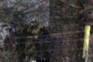 """Al momento de encontrarse ahí no notó nada raro. Sin embargo, al revisar las fotos con detenimiento en su casa, observó una figura extraña. """"Todavía no sé qué pensar respecto a esta toma, parece un hombre con casco. Parece ser un soldado anglosajón"""", mencionó el fotógrafo Jamie, de 22 años, al diario británico """"Mail One"""". Foto:Vía Jimie Brassington/Expressandstar. Imagen Por:"""