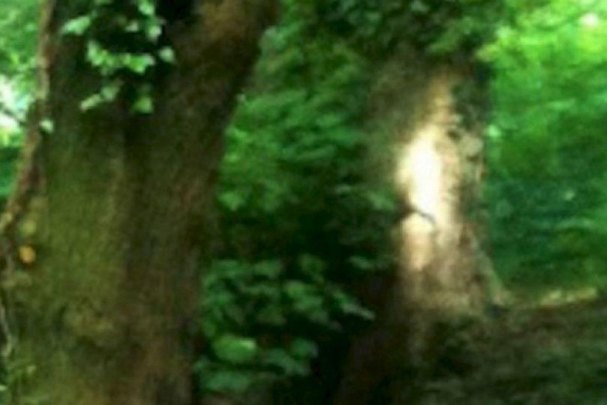 6. Elaine Steward, de 65 años, se llevó una gran sopresa al descubrir algo insólito en una de las fotos que tomó mientras realizaba una caminata. Foto:Birminghamhistory. Imagen Por: