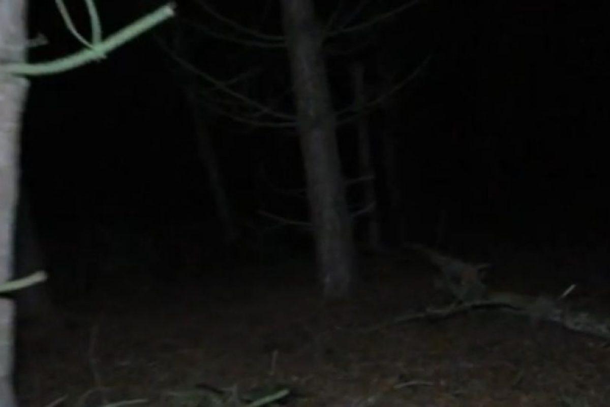 """7. El grupo de investigadores de """"Haunted Finders TV"""" asegura haber capturado una imagen de video donde se observa la presencia de """"un ente extraño"""". Foto:Via Hunted Finders. Imagen Por:"""