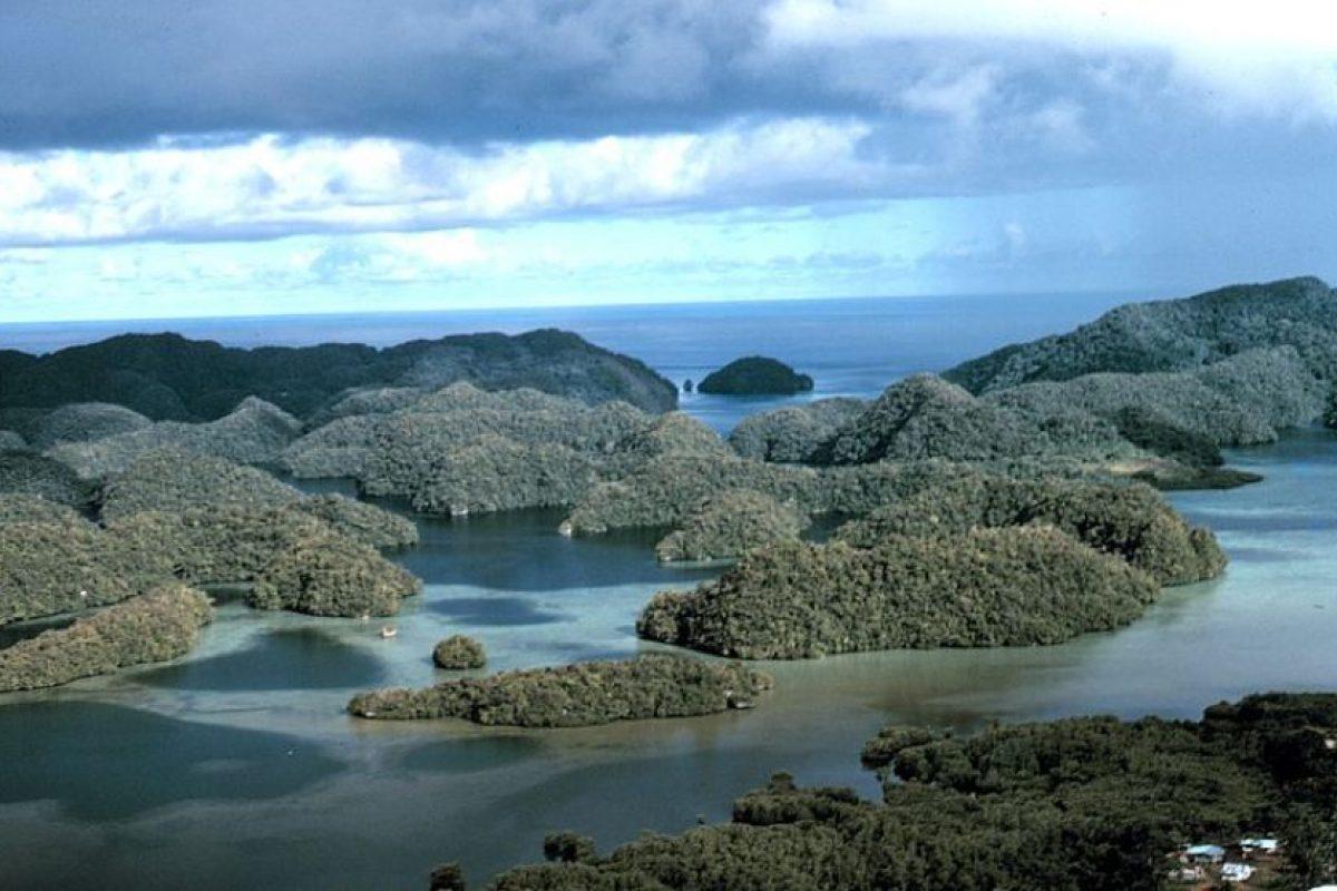 4. Palau Foto:vía Wikimediacommons/NOOA. Imagen Por: