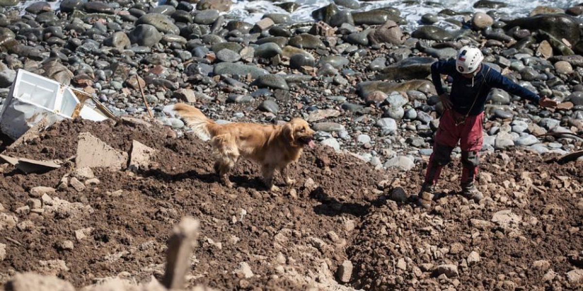 Viña del Mar: reanudan búsqueda de hombre arrastrado por las olas
