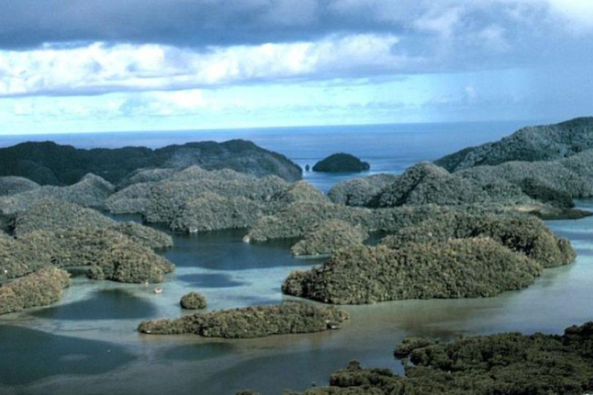4. Palau Foto:Getty Images. Imagen Por: