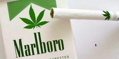 ¿Los cigarrillos de marihuana en cajetilla son una realidad?