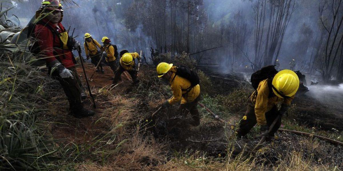 Onemi declara Alerta Roja para comuna de San Antonio por incendio forestal
