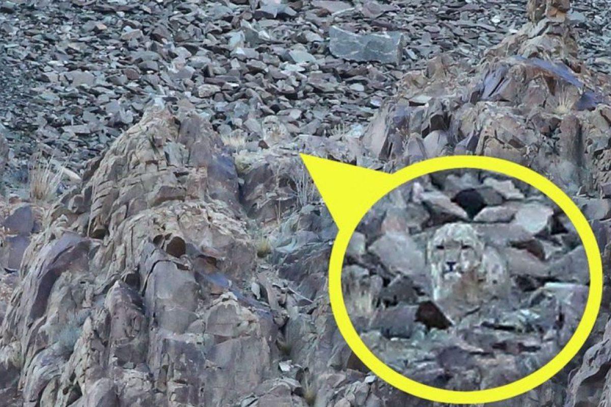 En estas rocas se dibujó lo que parece ser un leopardo. Foto:Vía Tumblr. Imagen Por: