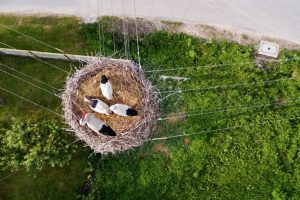 Polonia Foto:Vía Dronestagr.am. Imagen Por: