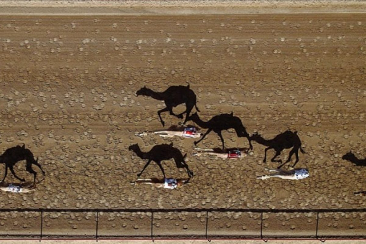 Pista de carreras de camellos Al Marmoun en Dubai, Emiratos Árabes Unidos. Foto:Vía Dronestagr.am. Imagen Por: