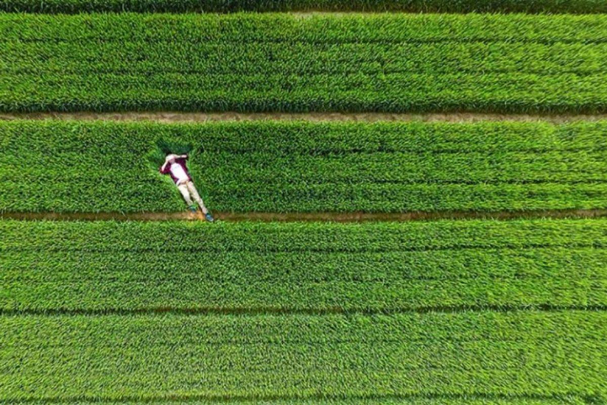 Sobre el embalse de Xiwe, Zoucheng, Shandong, China. Foto:Vía Dronestagr.am. Imagen Por: