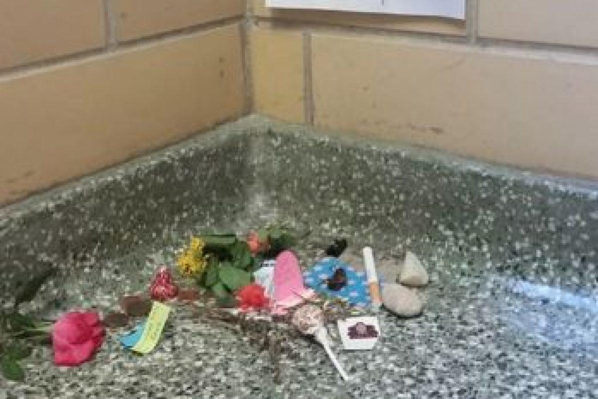 """Pero este caso no es el único. A continuación, un mapache pasó por el mismo """"tributo"""". Foto:Vía Imgur. Imagen Por:"""