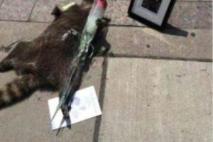 En Toronto, Canadá, un hombre contactó con el Twitter oficial de su ciudad para denunciarlo y el resultado no fue lo que esperaba. Foto:Vía Twitter.com/KrisReports. Imagen Por: