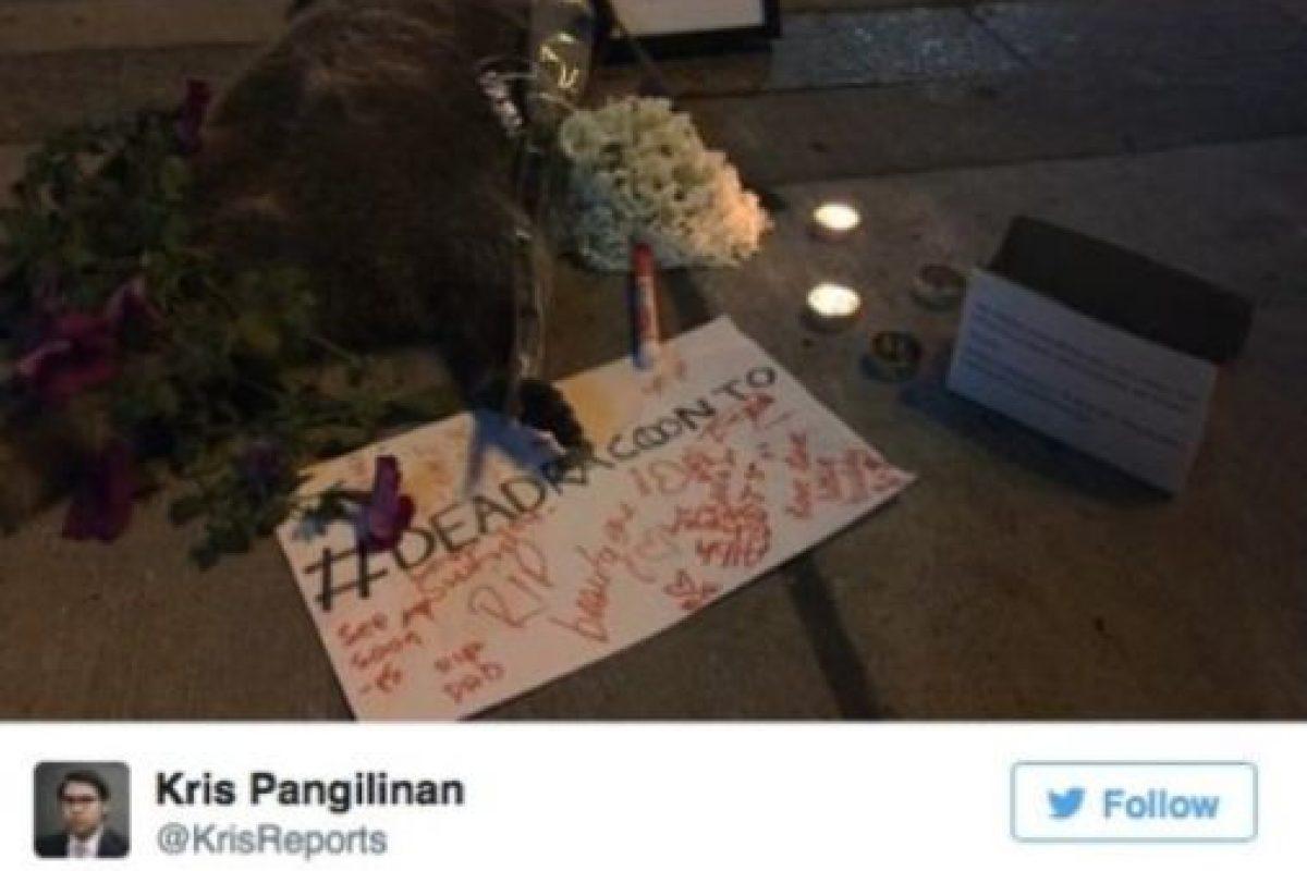 Después de 14 horas, fue removido. En el lugar quedó una ofrenda al mapache ignorado. Foto:Vía Twitter.com/KrisReports. Imagen Por: