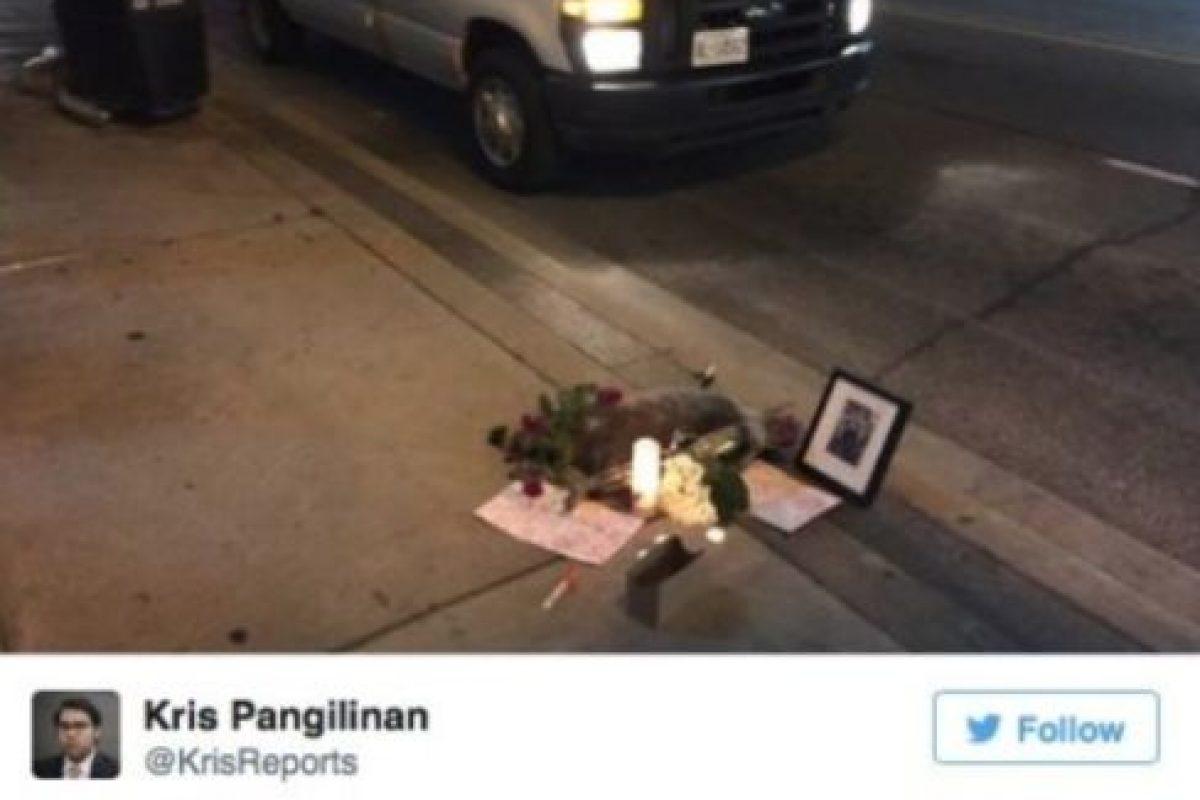 """A lo que el ciudadano respondió: """"Gracias, pobre mapache, tuvo una noche difícil"""". Foto:Vía Twitter.com/KrisReports. Imagen Por:"""