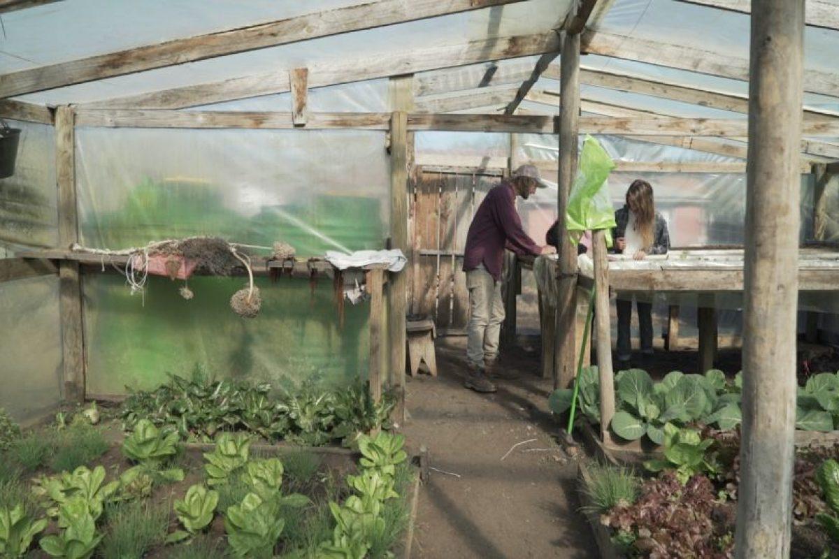 Foto:Ministerio del Medio Ambiente. Imagen Por: