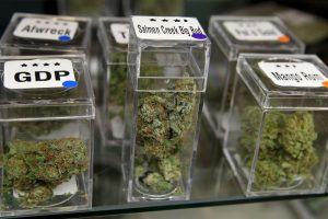 La tabla aprobada precisa que los consumidores podrán llevar hasta 10 gramos de marihuana, 2 gramos de pasta base de cocaína, 1 gramo de clorhidrato de cocaína, 0,01 gramos de heroína, 0,01 gramos de éxtasis y 0,04 gramos de anfetaminas. Foto:Getty Images. Imagen Por: