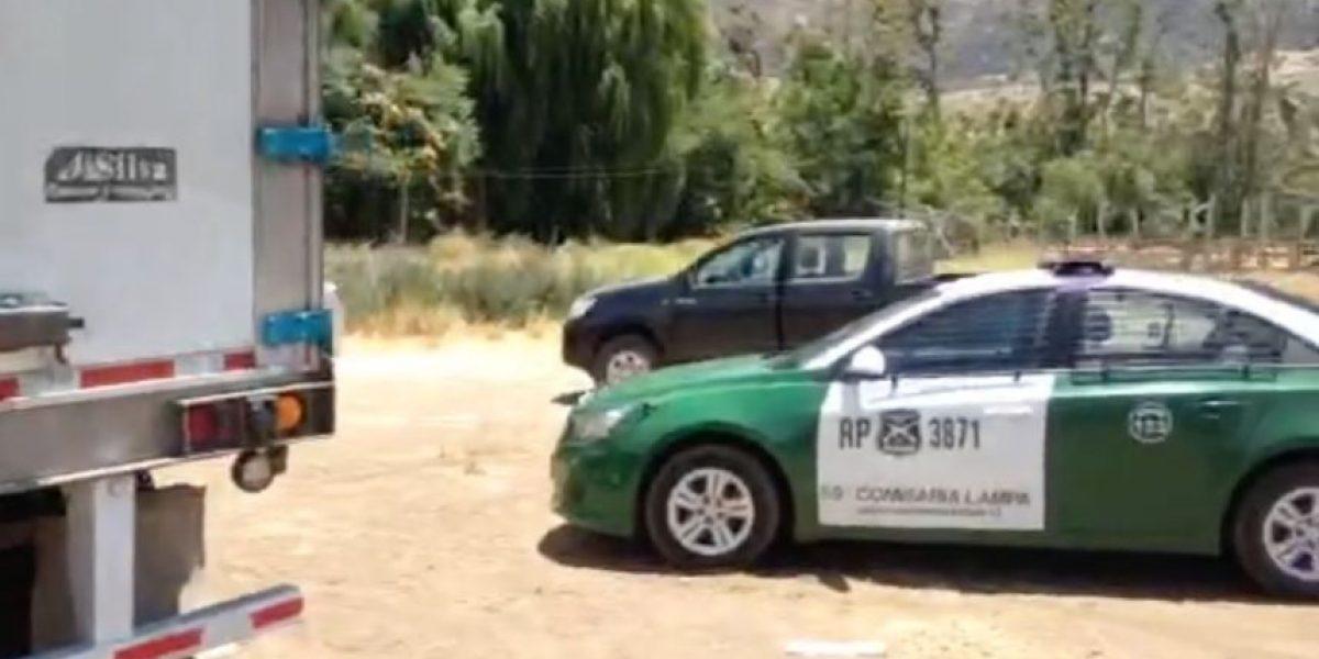 GPS permitió encontrar camiones robados con millonario cargamento de huevos