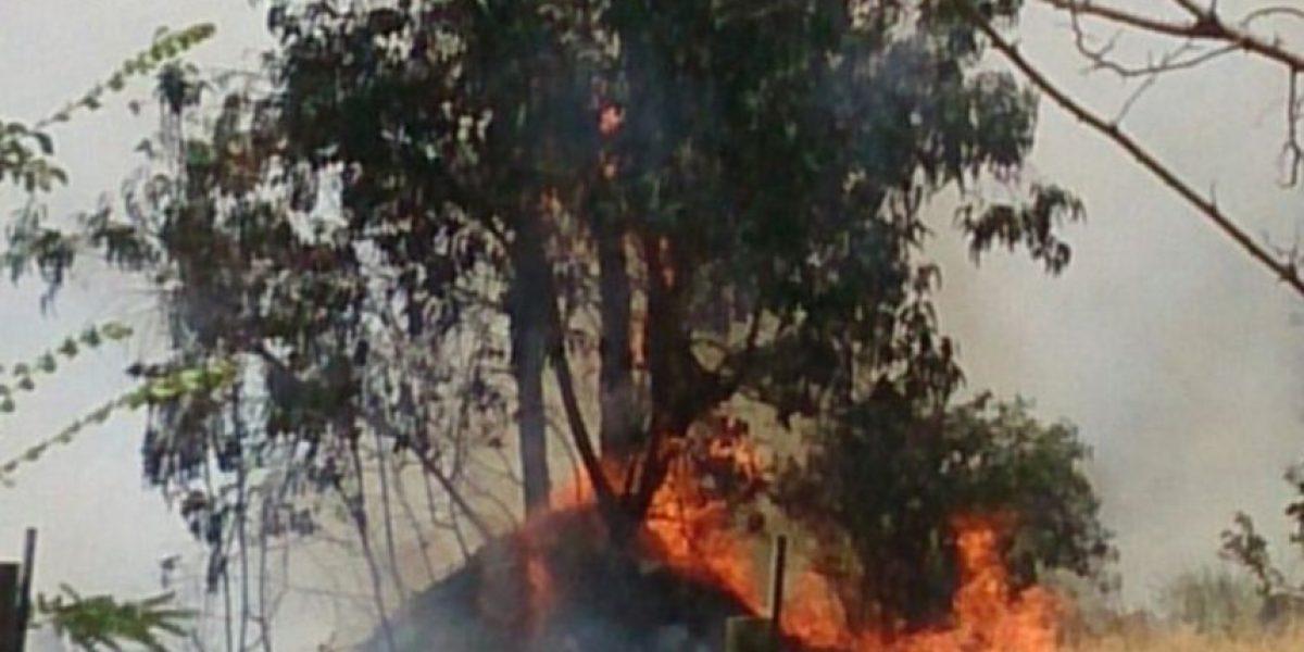 Declaran Alerta Roja por incendio forestal en hospital siquiátrico El Peral