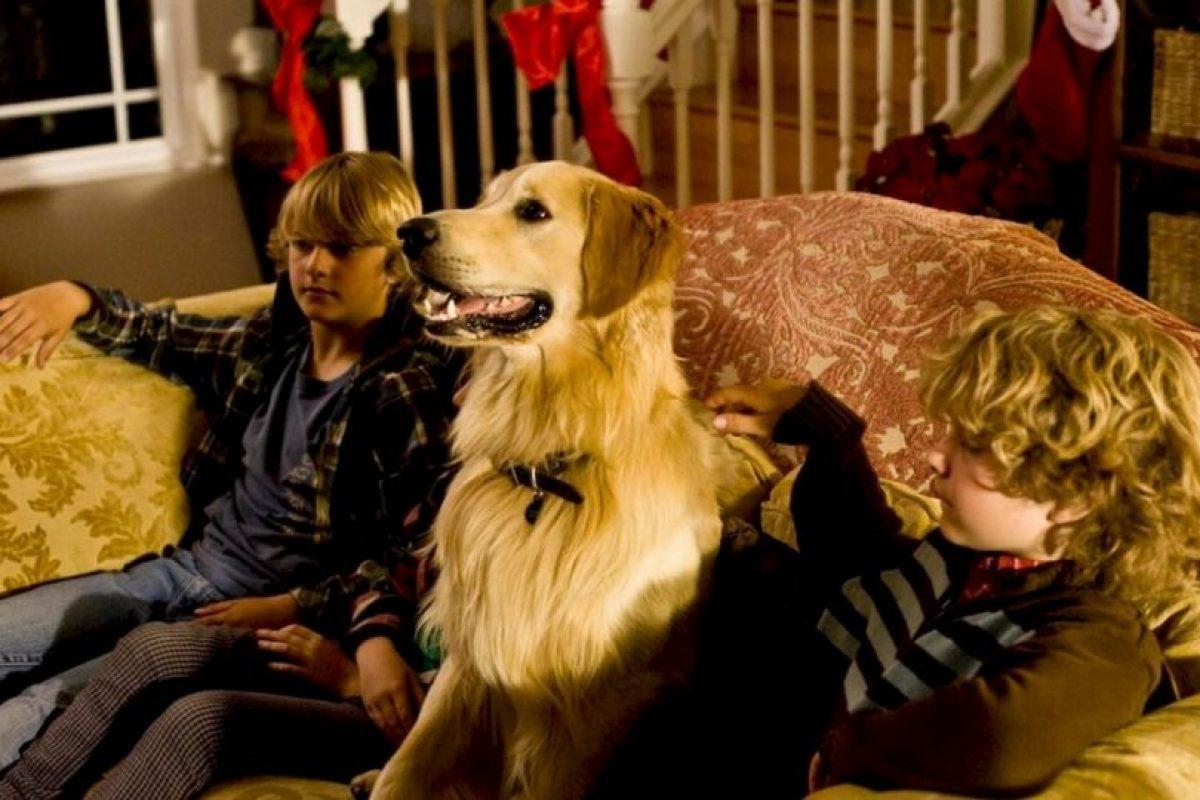 Unidos por sus perros, un padre y una madre solteros se enamoran. Pero la situación se complica cuando deciden reunir a sus familias. Foto:vía Netflix. Imagen Por: