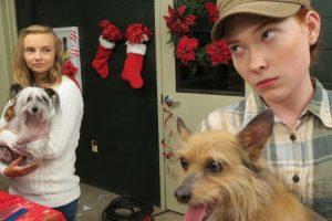 Un adolescente problemático descubre que el refugio de mascotas donde hace servicio comunitario cerrará y tiene solo 12 días para encontrar un hogar para cada perro. Foto:vía Netflix. Imagen Por: