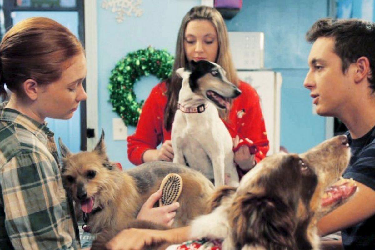 """4. """"12 Dog Days Till Christmas"""". Foto:vía Netflix. Imagen Por:"""