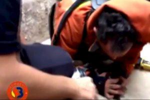 2. ¡Increíble! Bombero salva a un cachorro con respiración boca a boca Foto:Facebook.com/BomberosdelConsorcioDeValencia. Imagen Por: