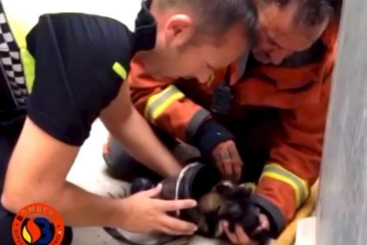 Carlos Arana y un grupo de bomberos llegaron a la ciudad de Sagunto en Valencia, España, para extinguir el fuego de una casa. Foto:Facebook.com/BomberosdelConsorcioDeValencia. Imagen Por: