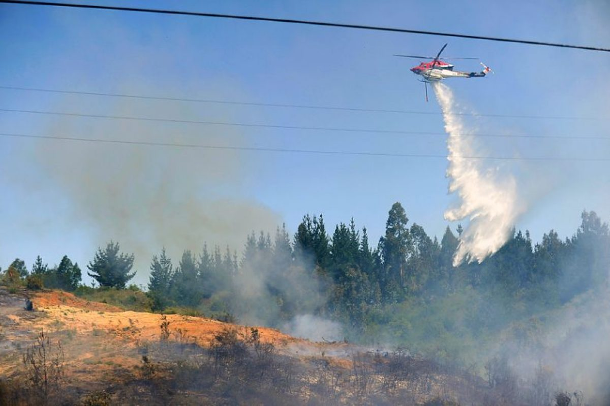 Brigadas de Conaf apoyadas por aviones y helicópteros combatieron el incendio registrado hoy en Las Palmas. Foto:Agencia Uno. Imagen Por: