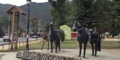 ¡Notable! Burrito despistado confundió a estatua con el amor de su vida