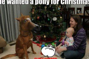 Él quería un pony para Navidad Foto:Know Your Meme. Imagen Por: