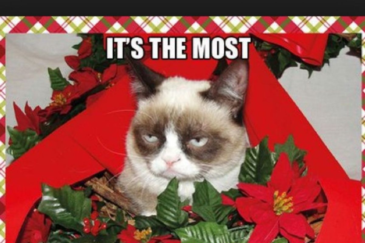 Foto:Tumblr.com/Tagged-Christmas-memes. Imagen Por:
