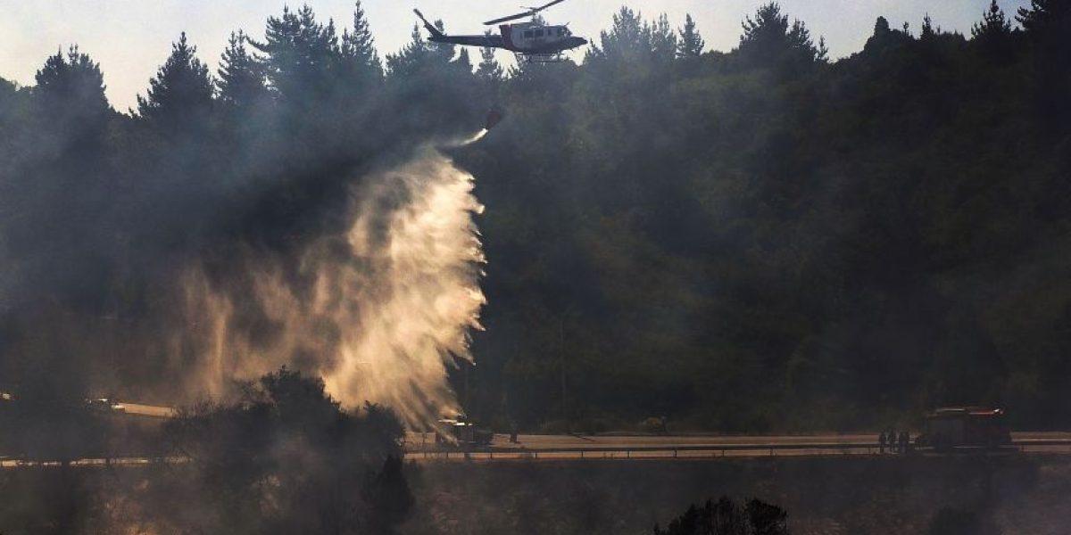 Onemi levantó Alerta Roja en dos comunas y mantiene Alerta Amarilla en V Región por incendios forestales