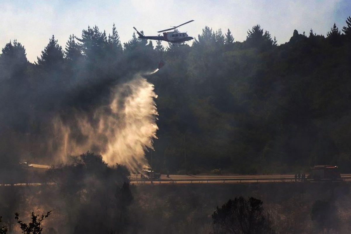 Las altas temperaturas influyen en el mayor riesgo de incendios forestales. Foto:Agencia Uno. Imagen Por:
