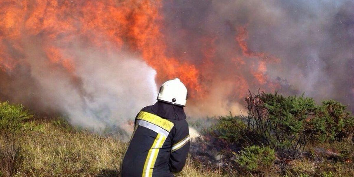 Incendios forestales mantienen alerta amarilla entre Coquimbo y Maule