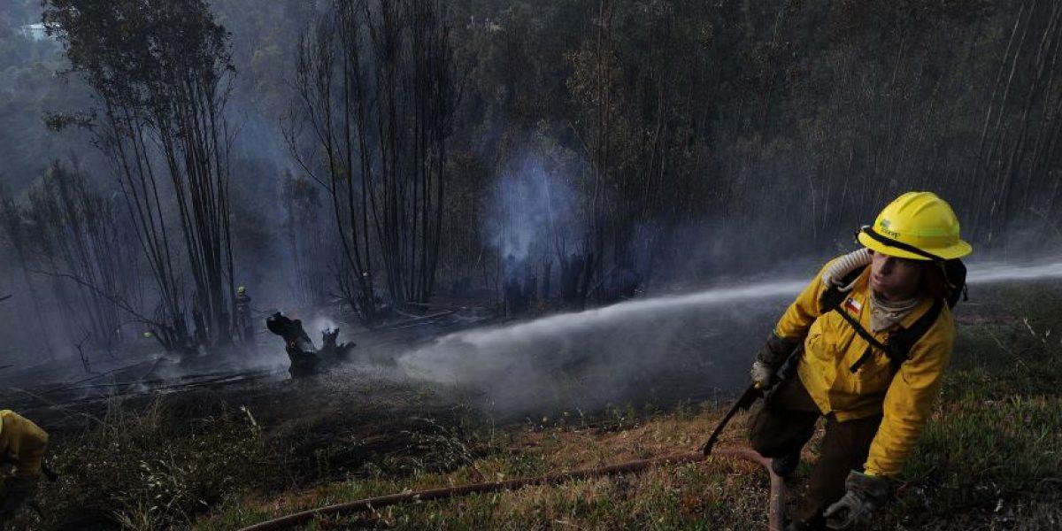 Cuatro focos de incendios forestales afectan a la zona central del país