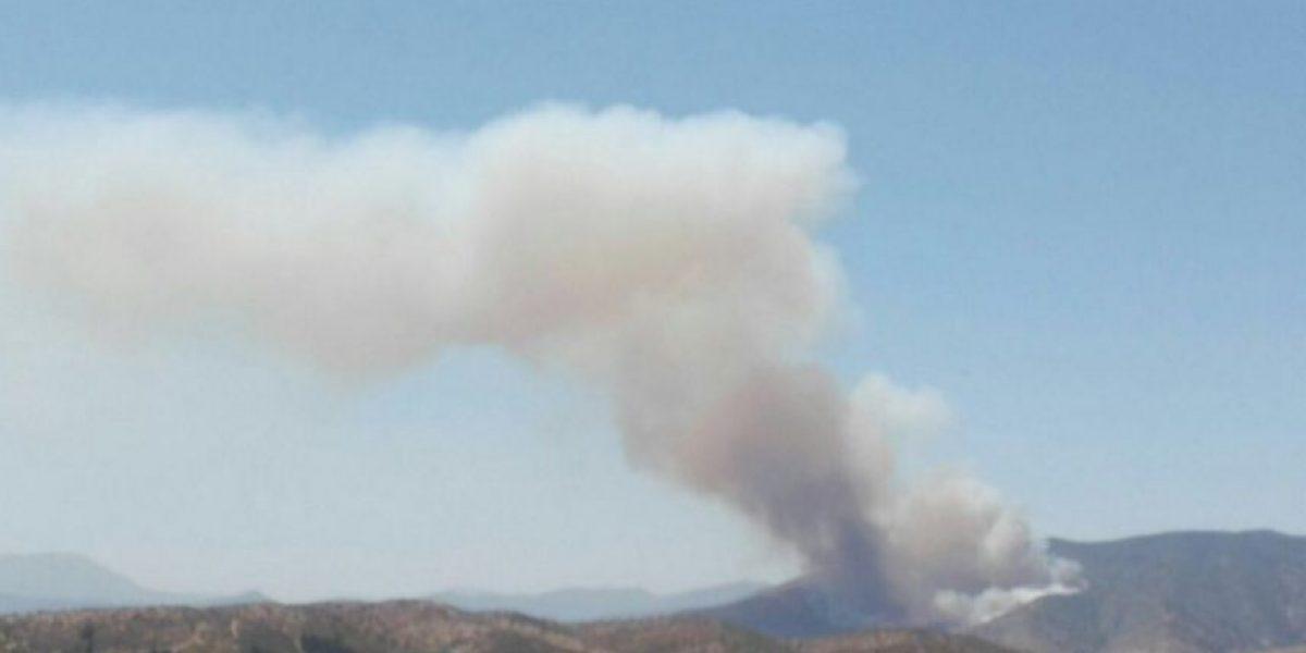 Melipilla: incendios forestales queman dos casas y se decreta alerta roja