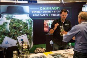 Se tolera el consumo de cannabis de forma personal, pero no la producción ni la venta de la misma. Foto:Getty Images. Imagen Por:
