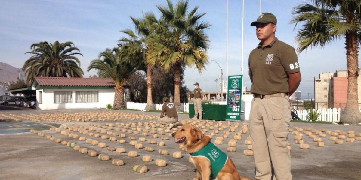 Carabineros incauta 17 toneladas de droga durante el 2015