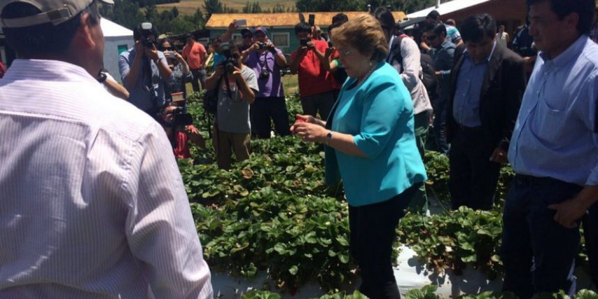 Bachelet se reúne con productores agrícolas durante visita a La Araucanía