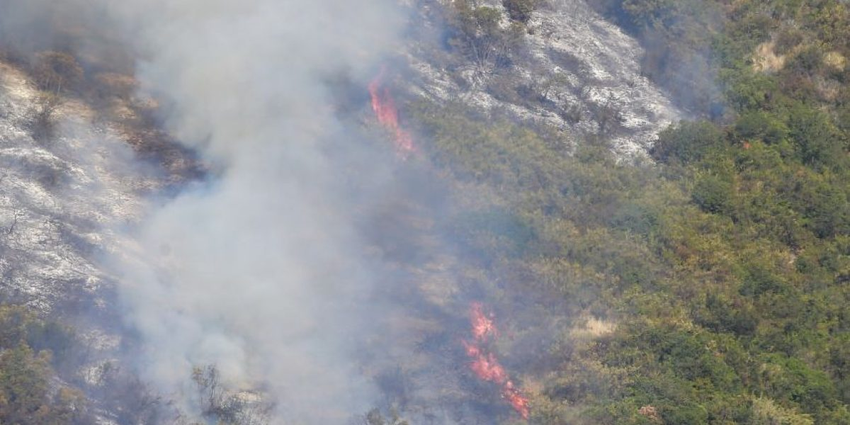 Onemi declara alerta roja para la comuna de Melipilla por incendio forestal